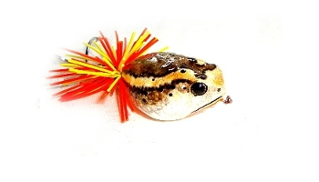 Link to more information on the Killer Blow Frog bait