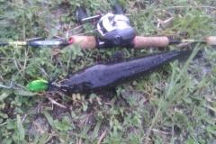 killer_frog_buzzbait_snakehead_lure_4