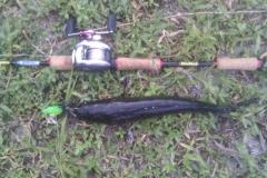 killer_frog_buzzbait_snakehead_lure_2